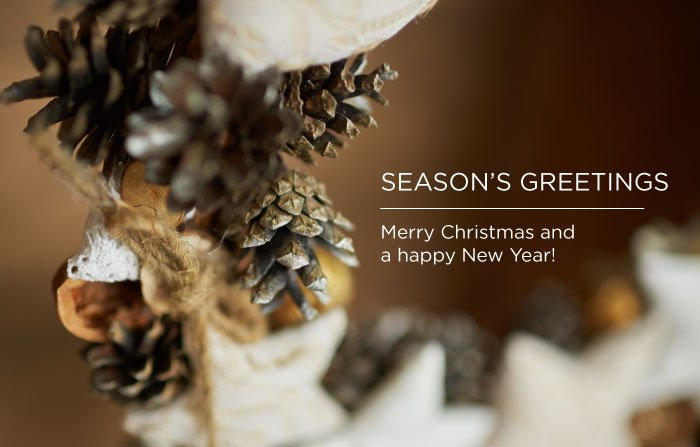 image 2, Here's to a glowing festive season! Somerset Surgery | Plastic Surgery Somerset West